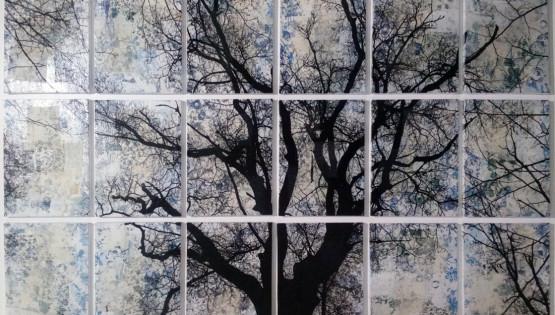 FELISI Albero 2016 cm. 110 x 160