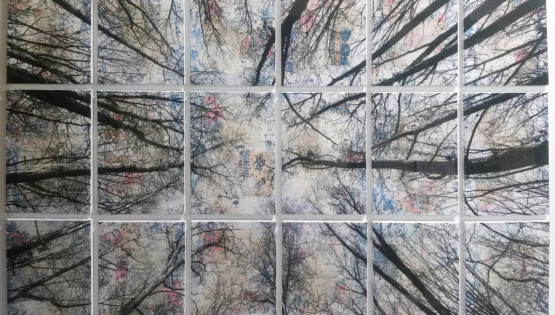 FELISI Alberi 2016 cm. 110 x 160