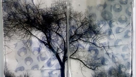 FELISI Alberi 2016 cm. 30 x 40