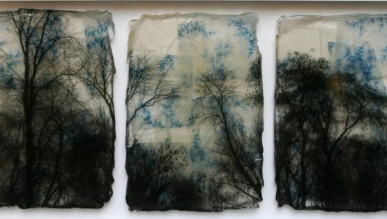 FELISI Alberi 2015 cm. 30 x 60