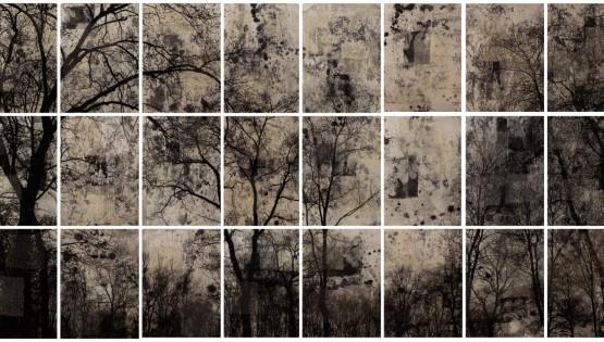 FELISI Alberi 2014 cm. 110 x 216