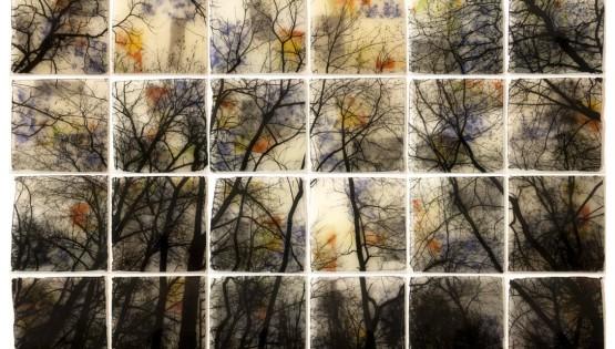 FELISI ALberi resina 2014 cm. 190 x 126