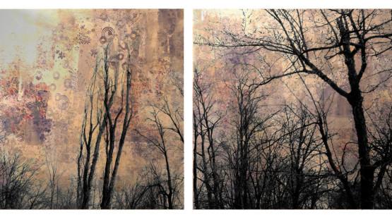 FELISI Alberi 2013 cm. 70 x 142