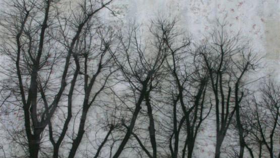 FELISI Alberi 2010 cm. 200 x 200