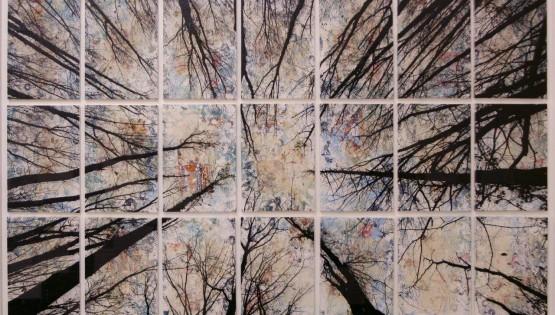 FELISI Alberi 2017 cm. 125 x 200