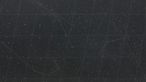 02 GOLDANIGA Mappa stellare 7892 cm. 90×120