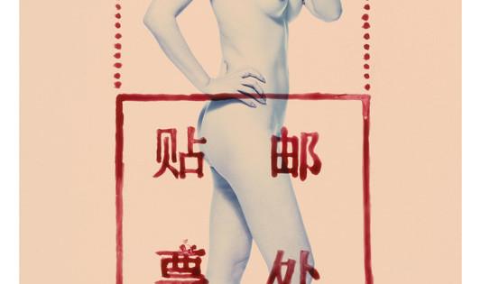 19 ROSFER & SHAOKUN   Postcode Lady I 2008 stampa da fotocolor inciso e dipinto