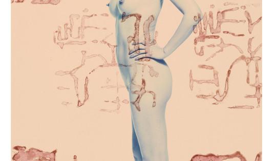 20 ROSFER & SHAOKUN   Postcode Lady II 2008 stampa da fotocolor inciso e dipinto
