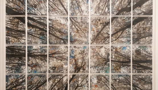 FELISI Alberi 2019 cm. 160×200