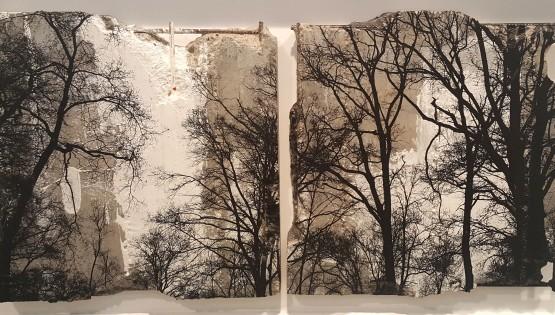 FELISI Alberi cm. 33 x 67 Tecnica mista e cemento(1)