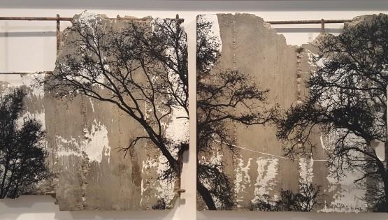 FELISI Alberi cm. 33 x 67 Tecnica mista e cemento(2)